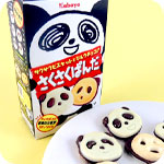 Saku Saku Panda Chocolate Biscuits